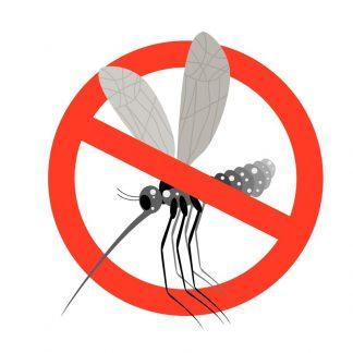 No zanzare