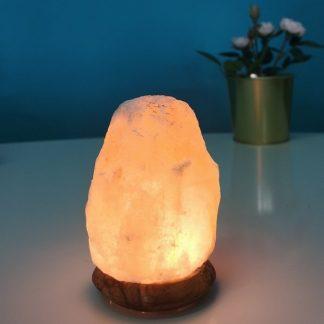 Mini lampada di Sale dell'Himalaya USB SunChine Famiglia Verde